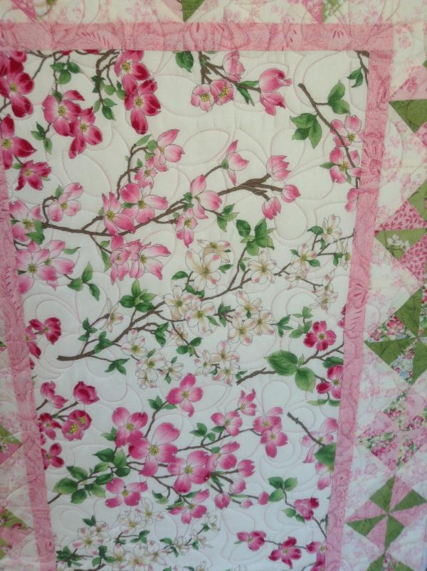 Ann's Spring Blossoms
