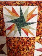 Kathy's Paper-Pieced Panel Play