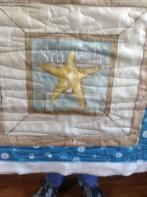 Kathy's Starfish Panel Play