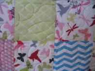 Beverly's Butterflies, Birds and Dragonflies