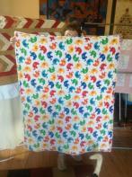 Brenda's Super Soft Baby Quilt